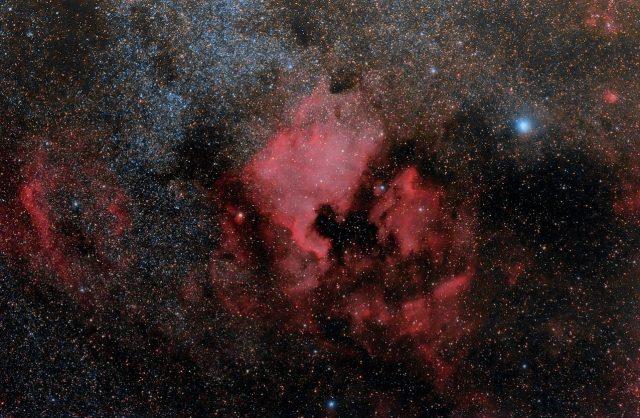 """Az Észak-Amerika-köd szinte pontosan kirajzolja a kontinens körvonalait, leginkább talán Alaszkát hiányoljuk. Jobbra, az """"Atlanti-óceánban"""" egy  jól megtermett pelikán jellegzetes kontúrja rajzolódik ki. Jobbra fent a fényes kék csillag a Deneb, a Hattyú (Cygnus) csillagkép alfája."""