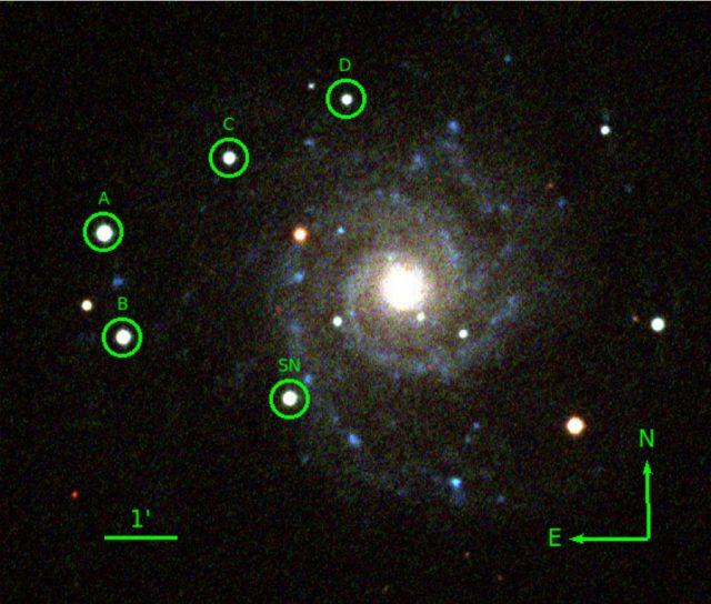 """Az SN 2013ej jelű szupernóva az MTA CSFK Csillagászati Intézet Piszkés-tetői Obszervatóriumának 60/90 cm-s Schmidt-távcsövével készült kompozit felvételén. z """"SN"""" jelzés a szupernóvát, az A, B, C, D betűkkel jelölt körök a fényességértékek kiméréséhez használt összehasonlító csillagokat jelzik."""